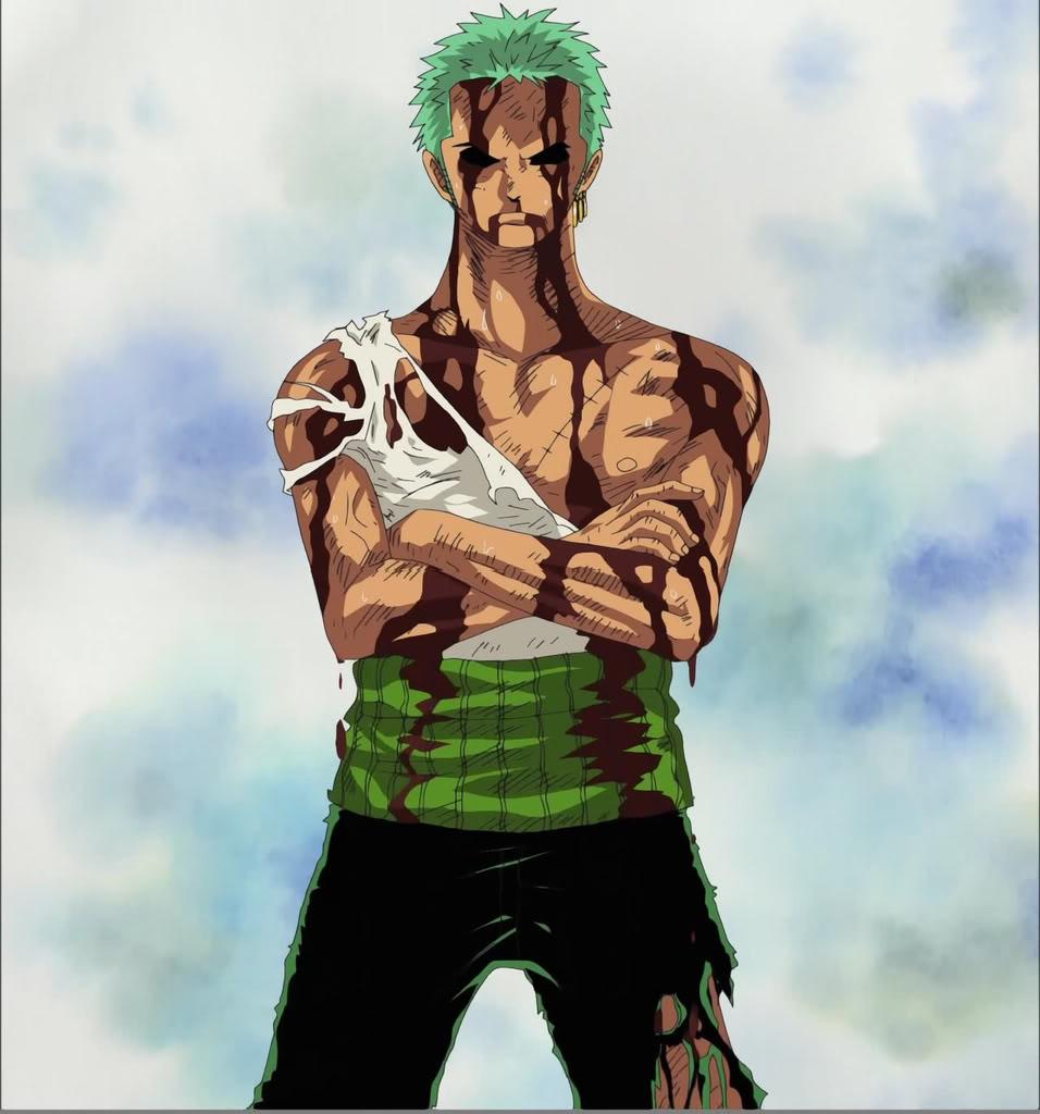 P.O One Piece Zoro_40