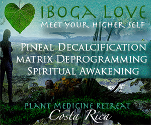 Iboga, the Matrix, and Pineal Gland Decalcification IbogaLove-300x250