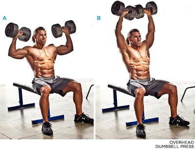المصارعه الحره   WWE وكمال الاجسام The-science-of-shoulder-training-shoulder-workouts_c