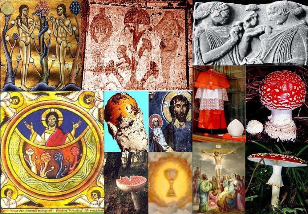 Spiritual Science Entheogen-visionary-plants-religion