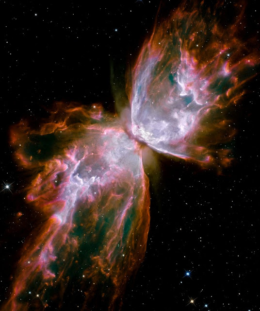 NGC 6302: The Butterfly Nebula - NASA Astronomy picture of the day  Butterfly_hst