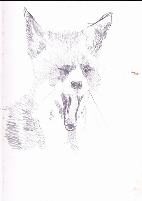 Dessins et illustrations - Page 2 IMG_0008