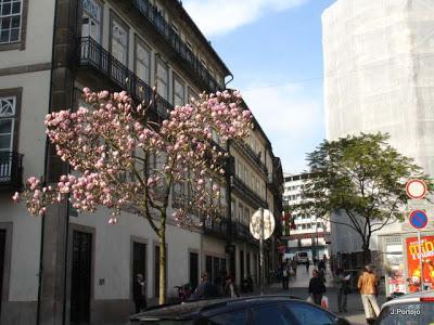 À descoberta do Porto! 1%2BDiversos%2B25.02.2011%2B027