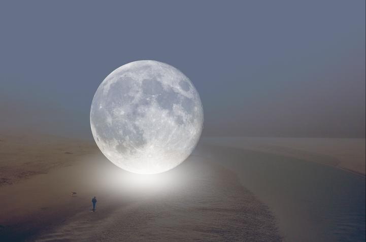 الكواكب تزور شوارع الأرض! DavidJordanWilliams5
