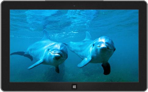 اجمل 10 ثيمات رسمية لويندوز 7  10-windows-7-themes-8