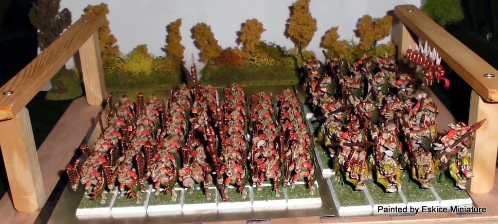 Armée Warhammer Battle 1-CIMG1402