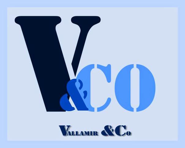 [Vallamir & Co] Bilan 2020 et projet 2021 ! Logo2