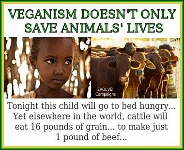 Stop Eating Your Friends! (Go Vegan)  - Page 2 Veganism_saves_lives_380