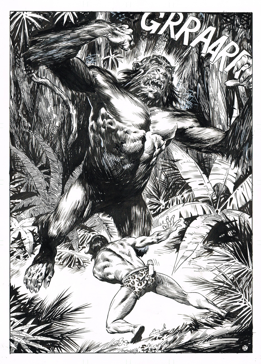 Tarzan, gospodar džungle B11