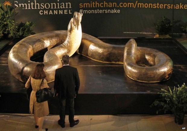 Algunos de los animales más grandes que han existido jamás Titanoboa