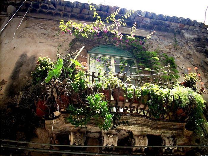 Vile .. kuce .. balkoni .. terase .. Eksterijeri  - Page 7 Balcony-garden-03