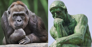 Evolution is a Lie - Intelligent Design is the Truth! Ape--thinker_532_1488578a