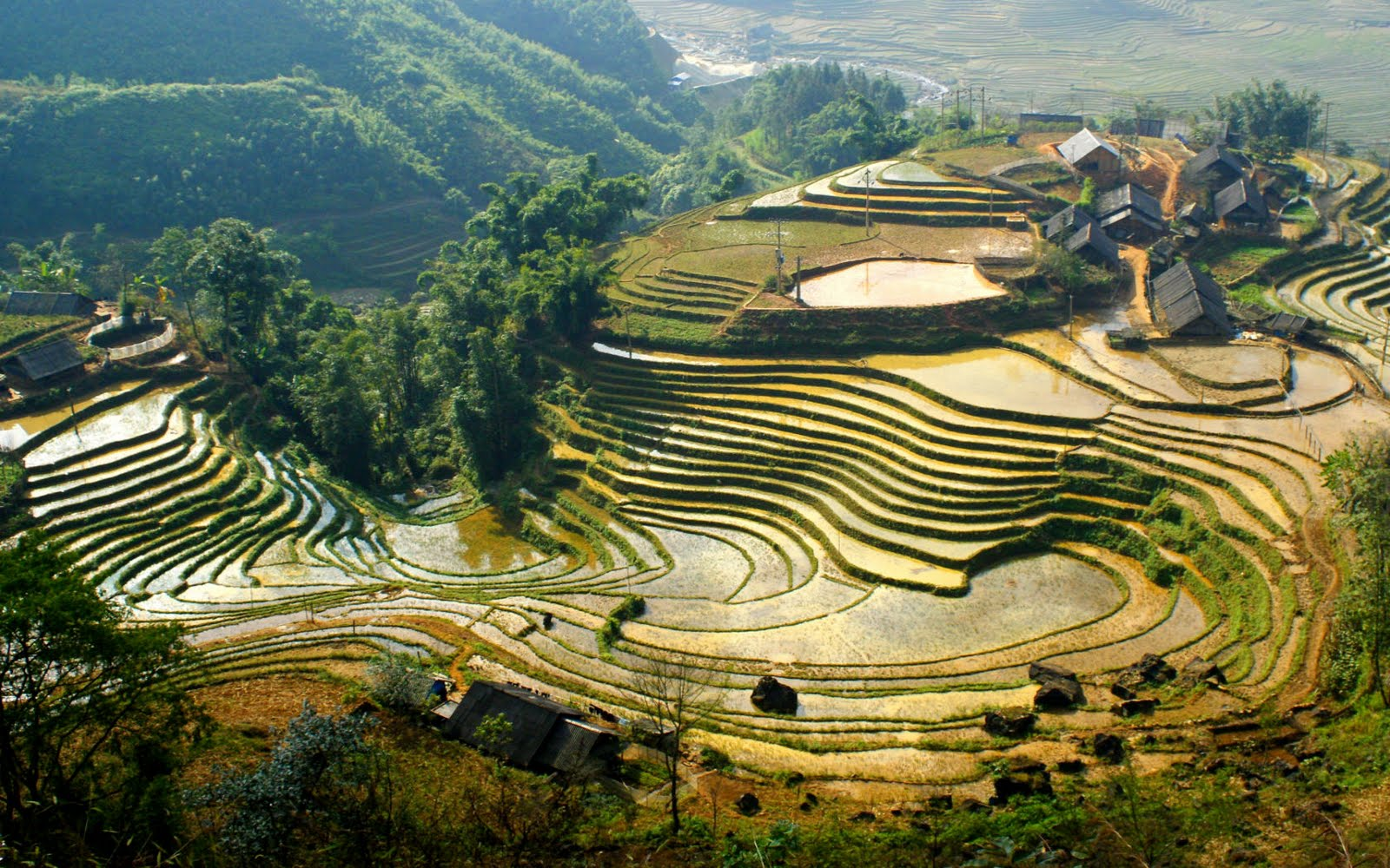 Site Martine 6/01/2015 trouvé par Martin Sapa_Vietnam