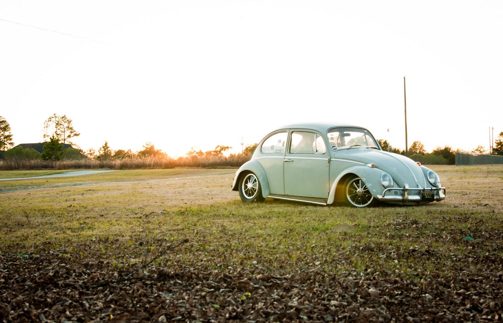 Otis - my '65 Beetle DSC_0024