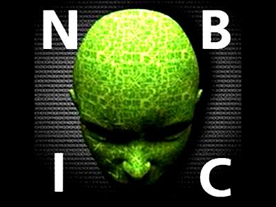 NBIC-Конвергенция без Самоорганизующейся Smart-MES это крайне несерьёзно N310