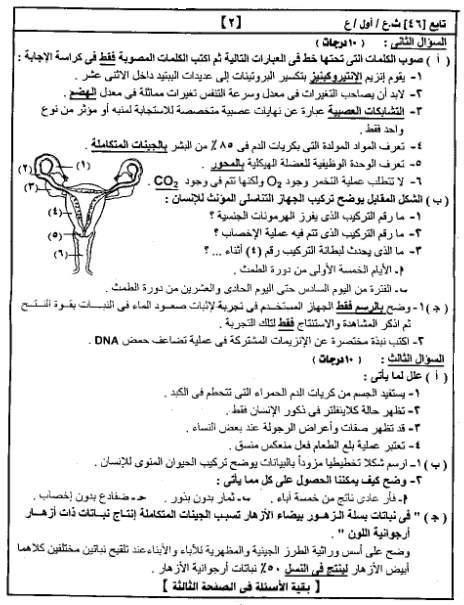 امتحانات الثانويه من مصراوى222012 2