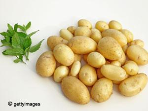 طريقة تخزين البطاطا  1
