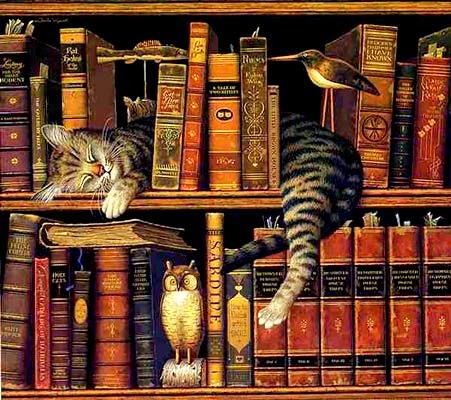 La magia de los libros Ch.wysocki