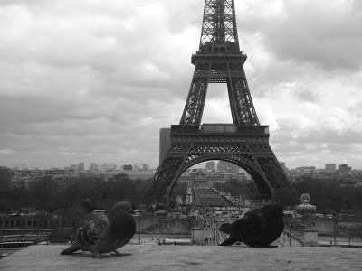 ------* SIEMPRE NOS QUEDARA PARIS *------ - Página 3 DSC06766