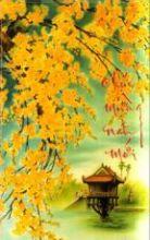 Tự bạch - Page 5 BaoGioXuanDen-ThaNhan