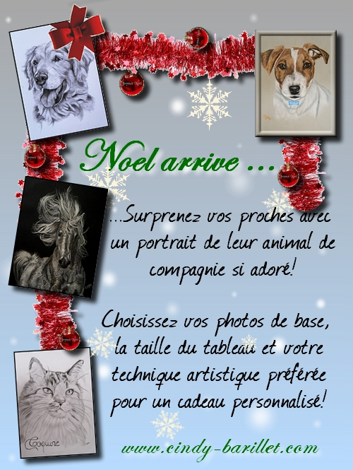 Mes oeuvres animalières - Page 5 Affichenoel