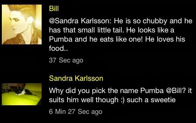 Respostas sobre o Pumba [15/02/2013] 3