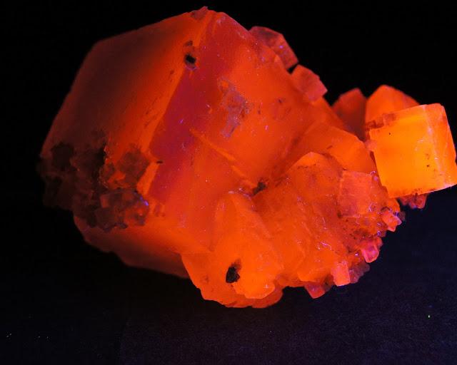 Colección de Minerales Fluorescentes _DSC4542