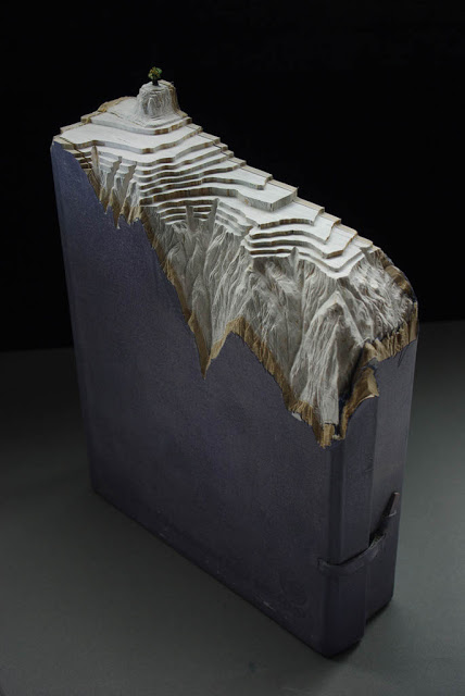 فن النحت على الكتب Landscapes-carved-into-books-guy-laramee-14