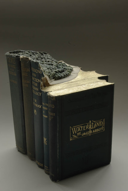 فن النحت على الكتب Landscapes-carved-into-books-guy-laramee-17