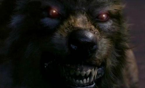 Season 1 Werewolf:  Eternal Falls - Werewolves Win - Page 12 Werewolf