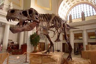 Dinosaur Hoax - Dinosaurs Never Existed! Age-dinosaur-bones-1