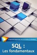 SQL : Les fondamentaux formation video Sql