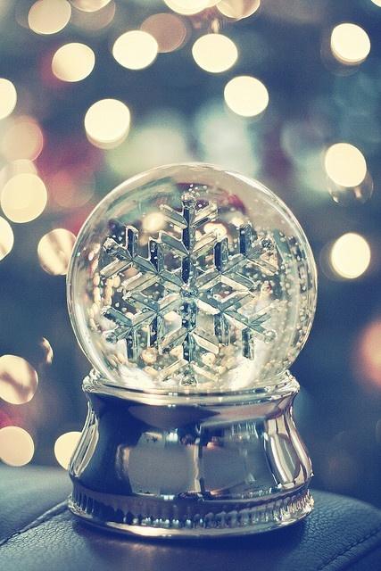 Christmas! - Page 3 0e5247e69ee1bff52f938b8018013578_large