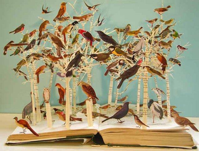 La magia en un libro Llibre