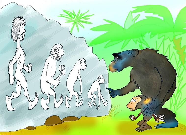 Вопросы христиан для эволюционистов. - Страница 12 Evolution