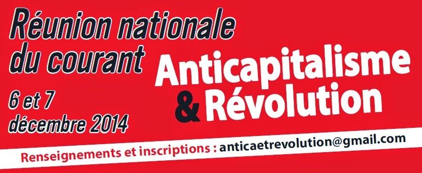 """Courant """"Anticapitalisme et Révolution"""" du NPA - Page 3 Image%2Breunion%2Bnationale"""