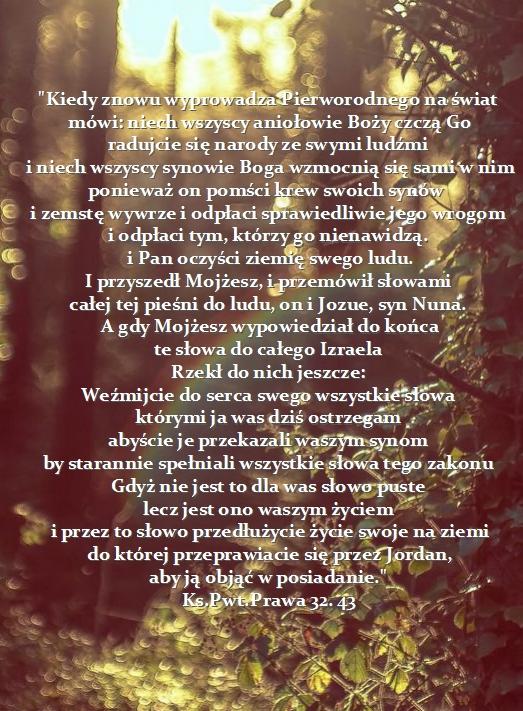 Cudowne wybawienie ludu Bożego - Page 6 Stylowi_pl_fotografia_10193359%255B1%255D%2B%25282%2529_Fotor