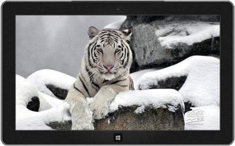اجمل 10 ثيمات رسمية لويندوز 7  10-windows-7-themes-9