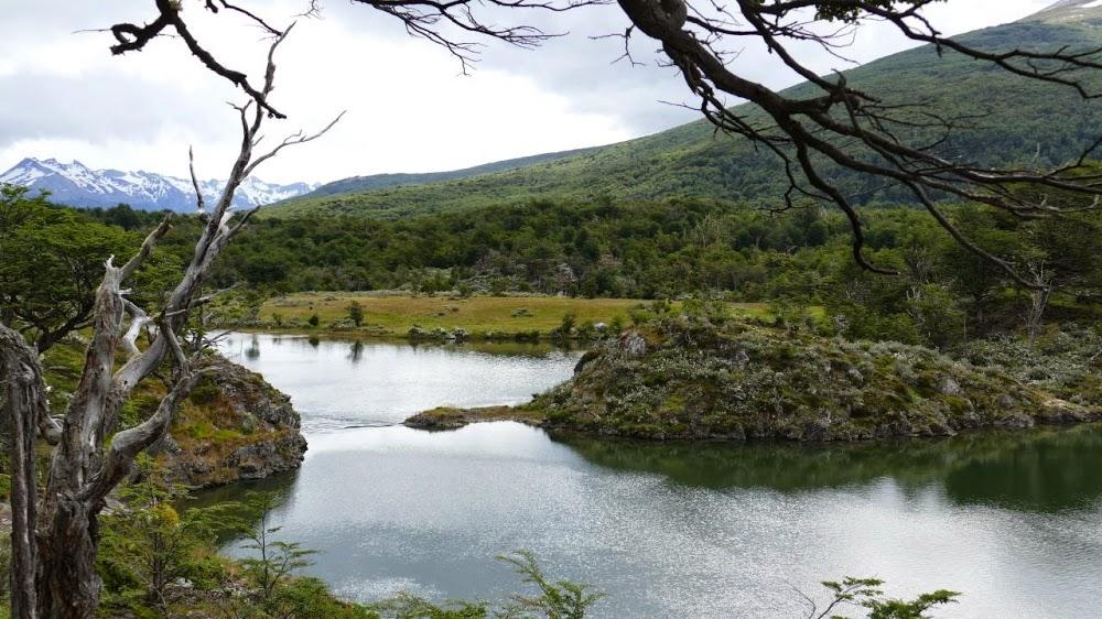 Adventure-Overland: Transafrica - Panamericana and next? Tierra-del-fuego-nationalpark-2