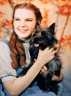 Judy Garland 83495-050-7373ff5d