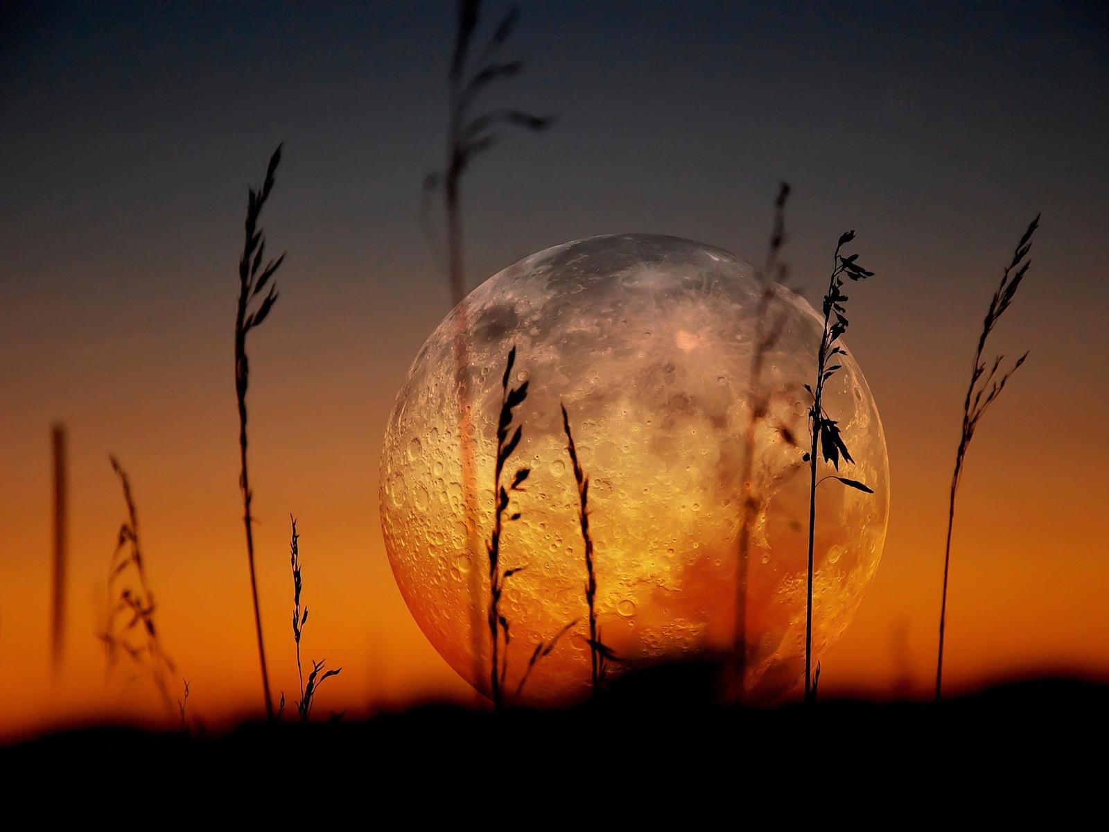 SUELY  cariñet Beautiful-full-moon-1600x1200-wallpaper