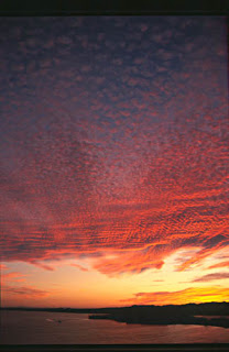 موسوعة شاملة عن المحميات الطبيعية - حصريا على منتدى واحة الإسلام SunsetOverRasMohammedt