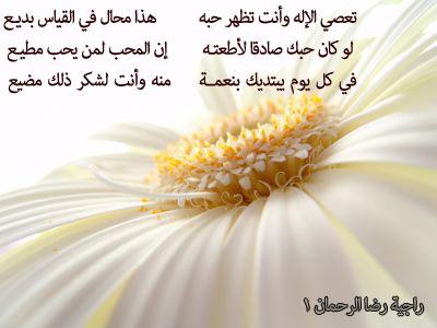 أجمل الأشعار في مناجاة العزيز الغفار Normal_flowers_2