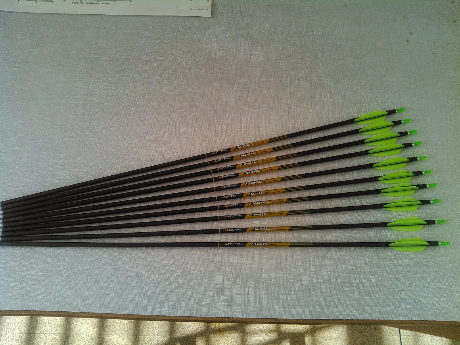 Vanes XS-Wings - Montage et tests des 70 mm sur Aurel Agil IMG_20150306_150121