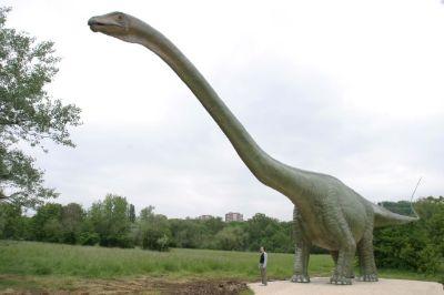 أي الحيوانات البرية كان الأضخم على مر الزمن؟!..  Seismosaurus