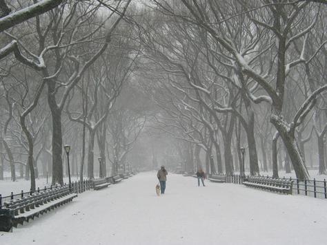 Vienkārši jaukas, skaistas un interesantas bildes par jebko - Page 9 New-York-City-snow-1