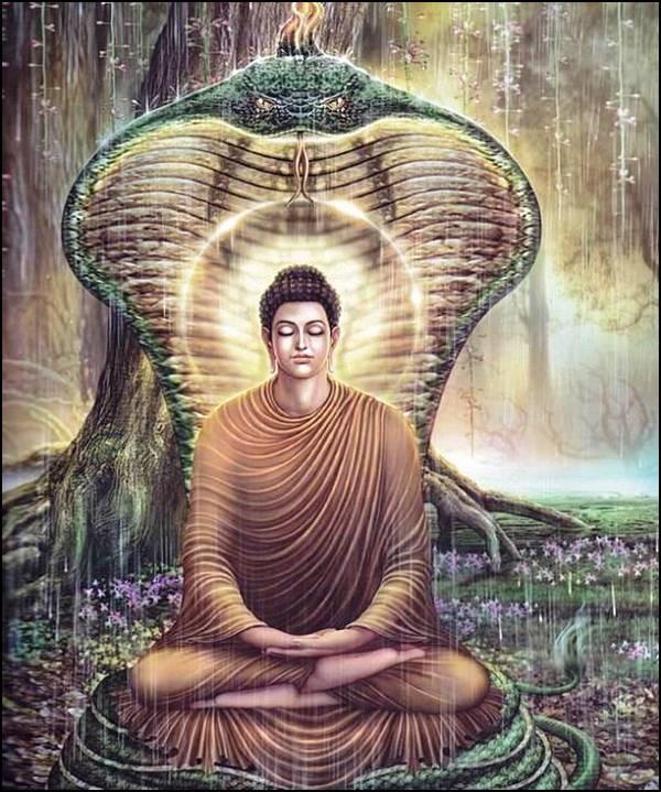 புத்தரின் வாழ்க்கை வரலாறு, படங்களுடன்... 21