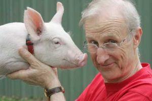 Diário dos Sonhos Lúcidos de Emerson Pawoski Farmer_holding_pig