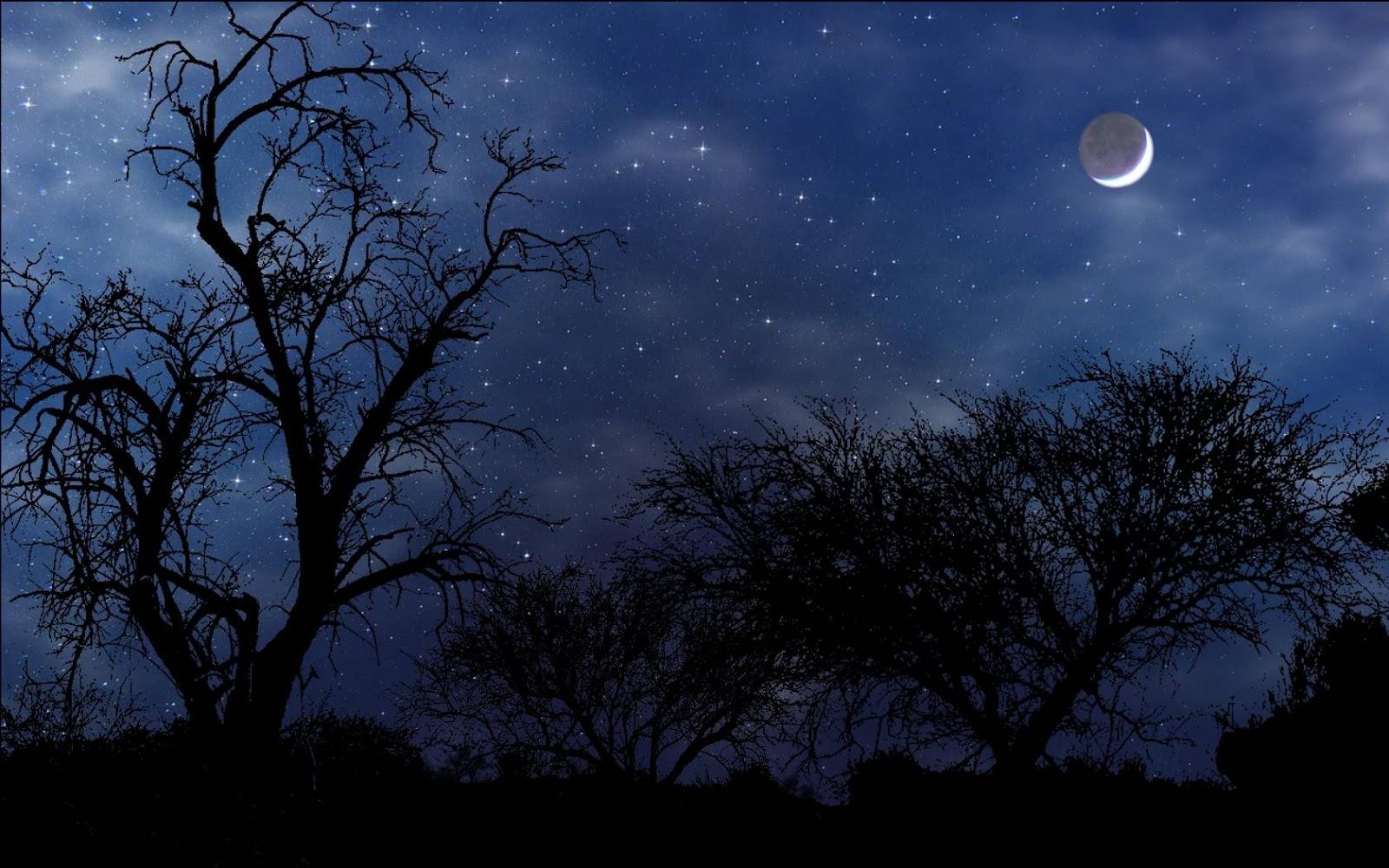Noćne fotografije... Night-scene
