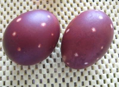 Красим пасхальные яйца IMG_1789